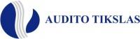 Audito tikslas, UAB