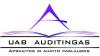 Auditingas, UAB