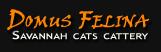 Domus Felina, kačių veislynas