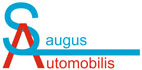 Saugus automobilis, paslaugų teikimo vieta, UAB