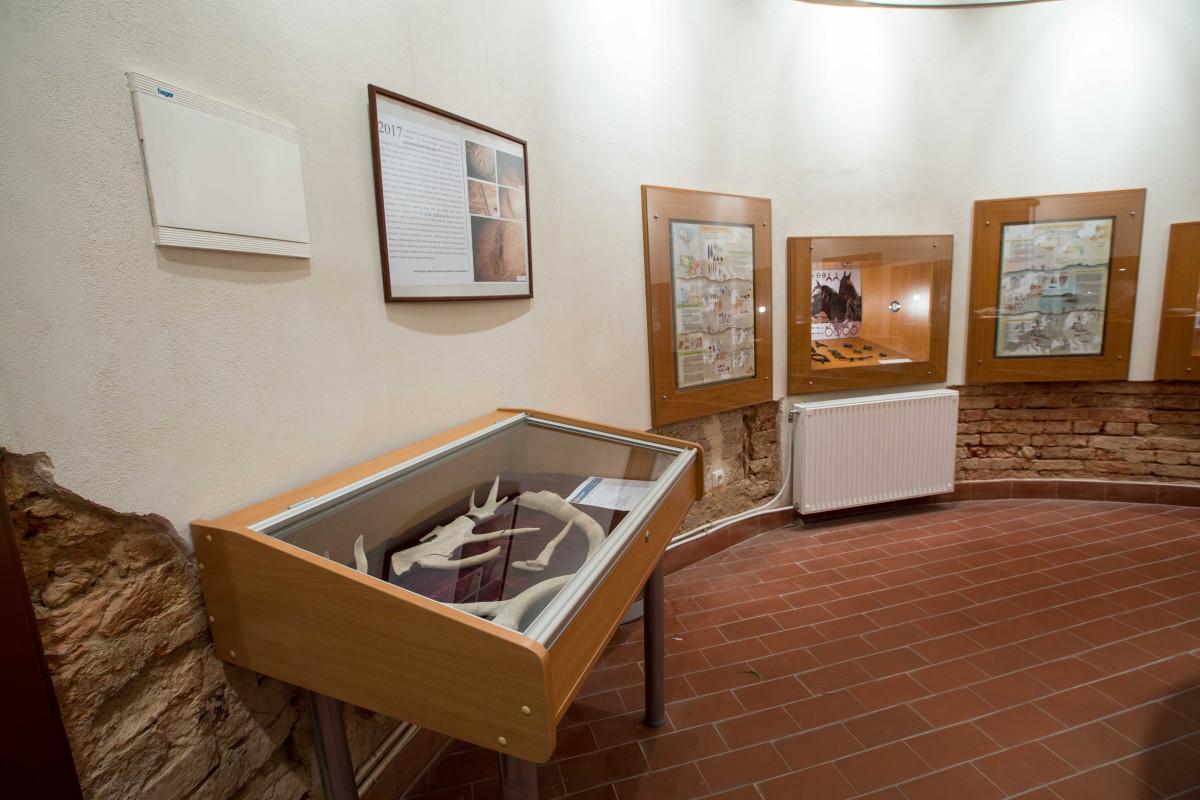 "Tauragės krašto muziejus ""Santaka"""