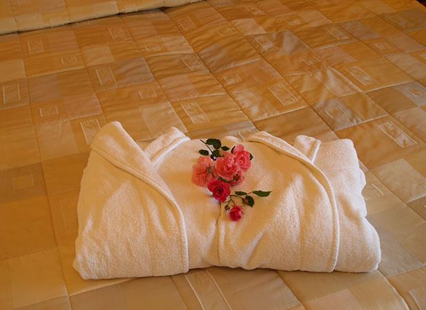 Violeta, viešbutis****