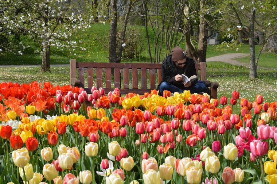 Vytauto Didžiojo universiteto Kauno botanikos sodas
