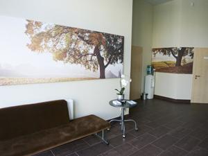 Ąžuolyno klinika