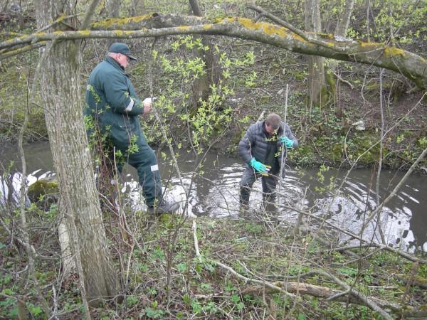 Šiaulių regiono aplinkos apsaugos departamentas