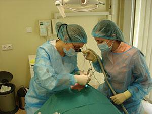 Deodenta, odontologijos klinika, UAB