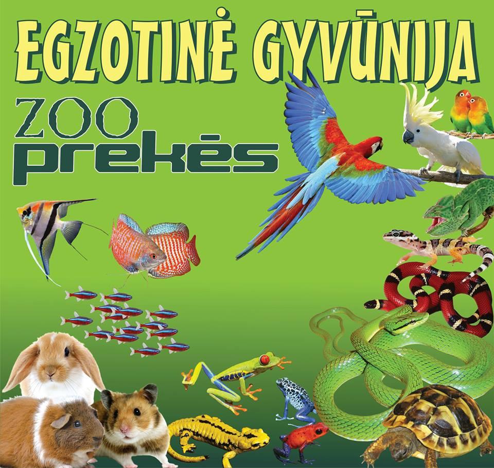 Egzotinė gyvūnija