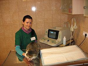 Kabarga, veterinarijos vaistinė, UAB