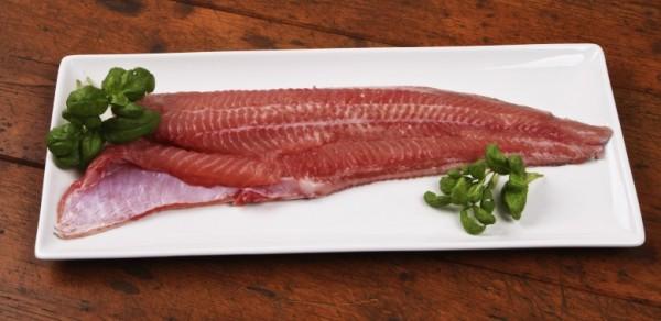 Bangų žuvis