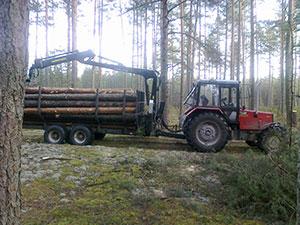 Log Forest, UAB