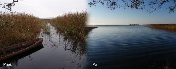 Vandens erdvė, UAB