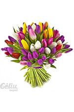 Gėlės į namus, filialas, MB