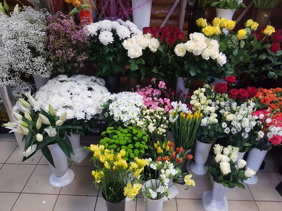 Smilga, gėlių salonas