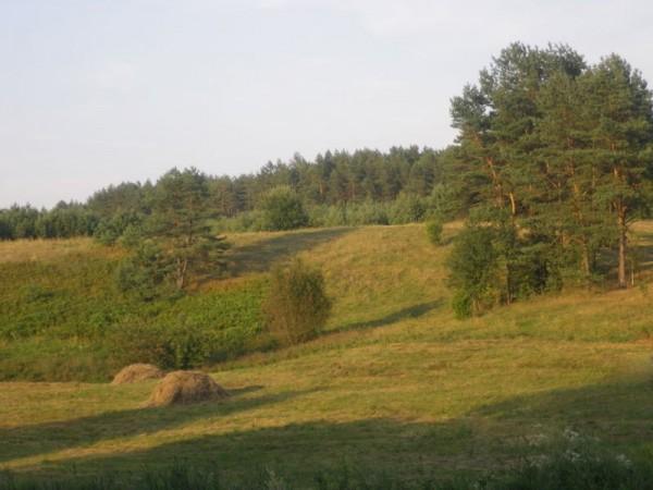 Po Luknos gluosniais, I. ir J. Vaitkų kaimo turizmo sodyba