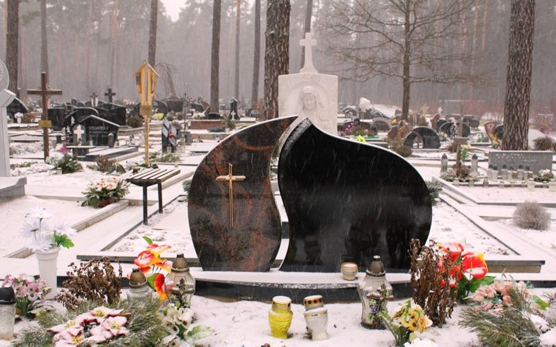 Gintaro paminklai, G. Čepukėno IVV