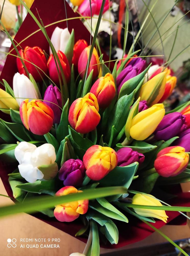 Tulpė, gėlių parduotuvė