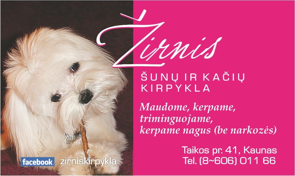 Žirnis, šunų ir kačių kirpykla, R. Sudeikienės IVV