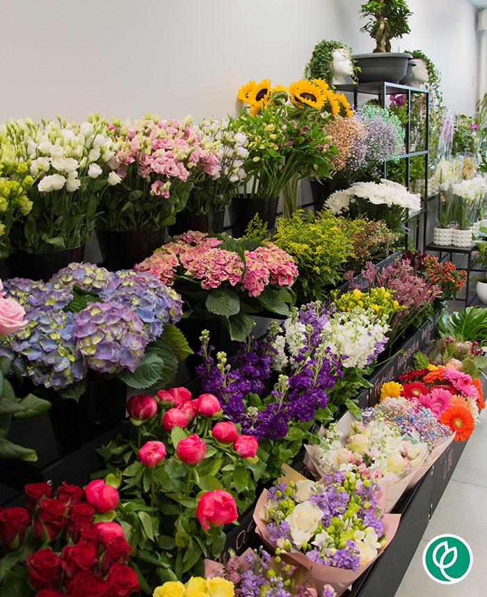 Pasaulio gėlės LT, UAB