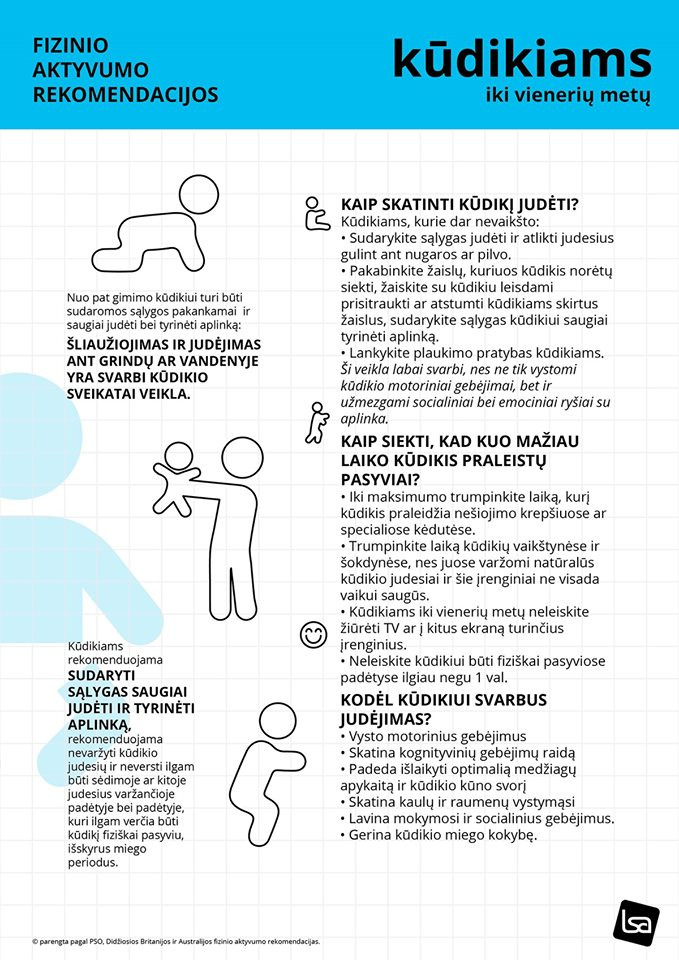 Lietuvos sporto akademija, VšĮ