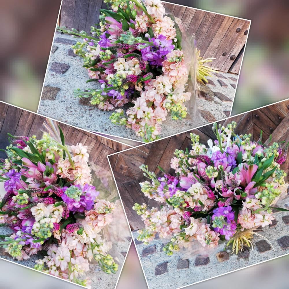Gėlės Palangoje
