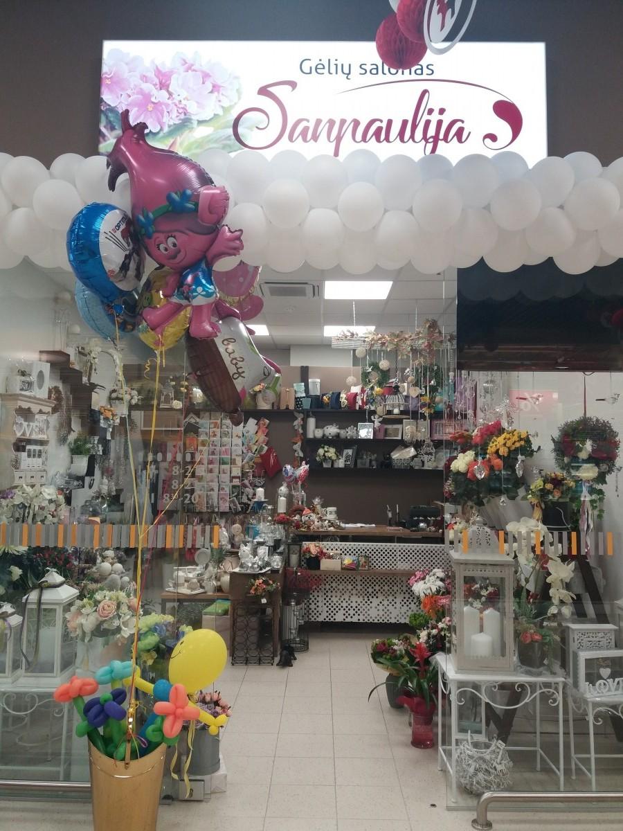 Sanpaulija, gėlių salonas, filialas