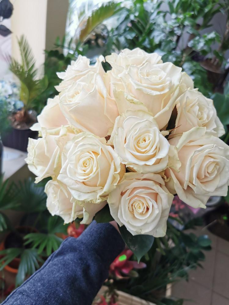 Jūratės gėlės