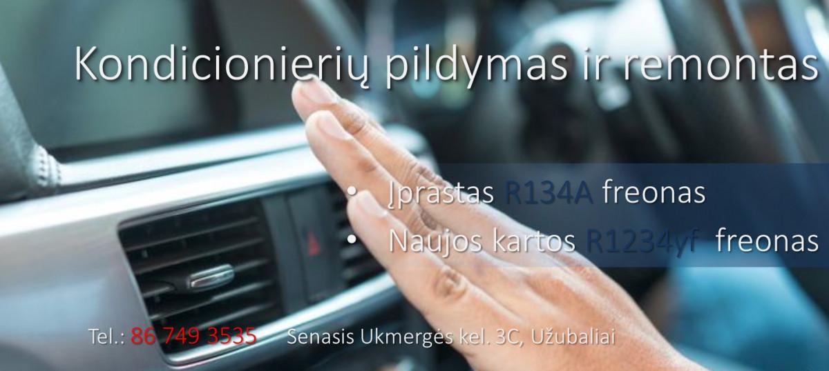 "Ažubaliai, autoservisas, UAB ""Egintra"""