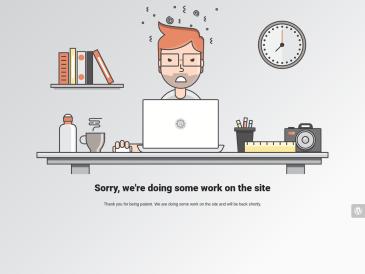Informacinių technologijų specialistai, MB