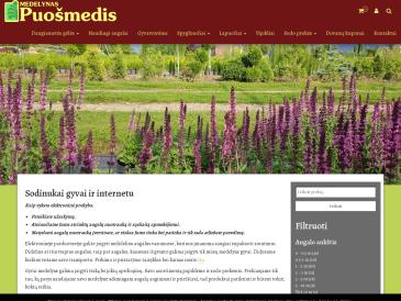 Puošmedis, J. Stancikaitės - Strikienės dekoratyvinių augalų ūkis - medelynas