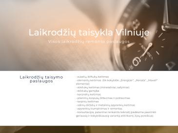 Laikrodžių taisykla, V. Ruzgio IVV