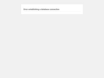 Suzuki metodo centras, VšĮ