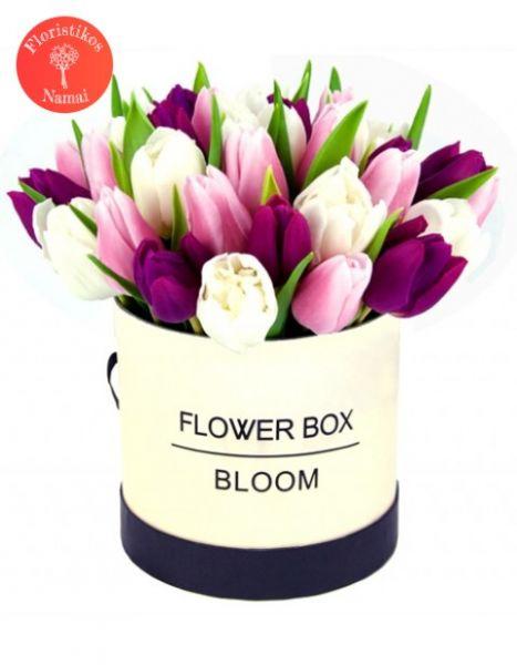 Tulpių gėlių dėžutė