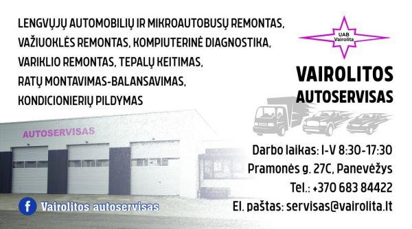 Vairolita, Autoserviso paslaugos