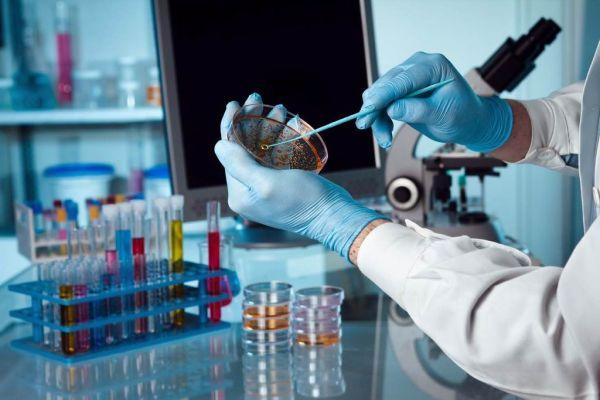 Mikrobiologiniai tyrimai