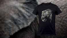 Dramblys