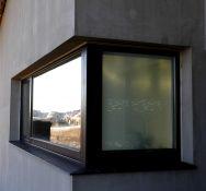 Europinio profilio mediniai langai