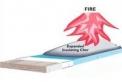 Konstrukcijų priešgaisrinis dažymas