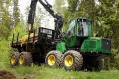 Perkame miškus su žeme ir išsikirtimui visoje Lietuvoje