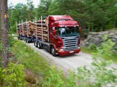Parduodame įvairią medieną (spygliuočių, lapuočių, malkas, statybinę)