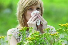 Įkvepiamų alergenų rinkinys