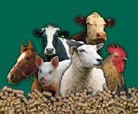 Prekiaujame lesalais vištoms, vištaitėms, broileriams, kalakutams, vandens paukščiams, putpelėms. Pašarais karvėms, veršeliams,kiaulėms, triušiams, avims, ožkoms. Ėdalais katėms ir šunims. Premiksais ir papildais vištoms , karvėms.