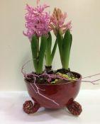 Gėlės pagal sezoniškumą