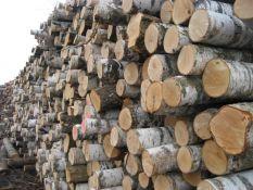 Superkame apvalią medieną