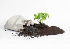 Birus organinis kompostas - AGROLINIJA-MK