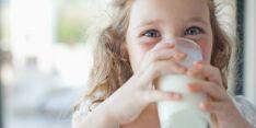 Karvės pienui alergijos tyrimas