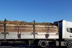 Išvežame obuolius