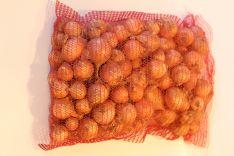 Svogūnai 15kg arba 25kg maišuose