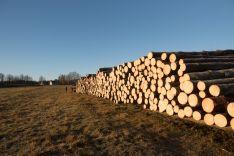 Apvalios medienos pirkimas/pardavimas