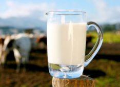 Pieno kokybės nustatymas