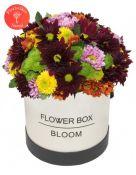 Įvairiaspalvė gėlių dėžutė